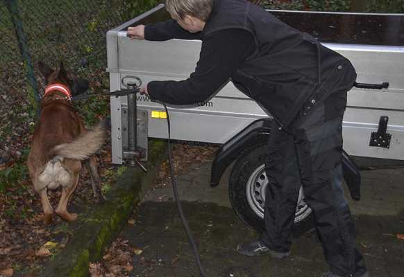 Auch ein Drogenspürhund kam zum Einsatz   Foto: © Polizei