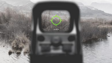 Photo of Optronik: EOTech XPS2 Green
